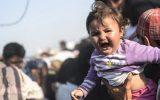 كيف يذهب اللاجئون إلى أوروبا؟