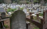 İstanbul'da Suriyelilere Özel Mezarlık Açıldığı İddiası