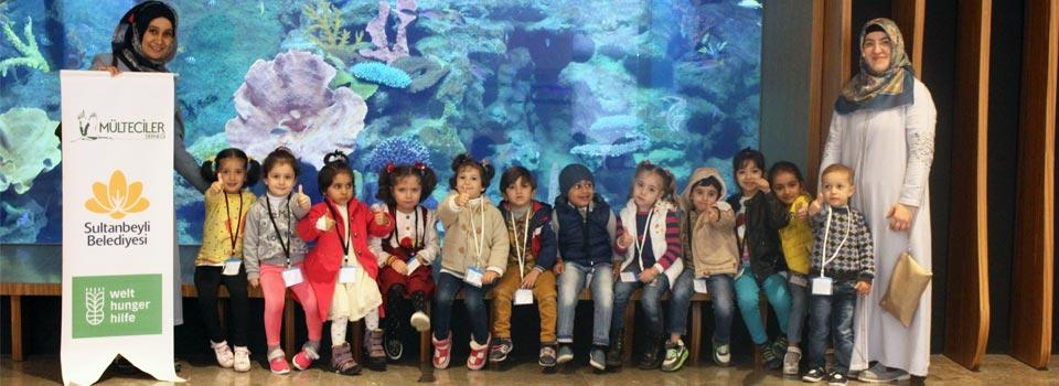 Akvaryum ve Sualtı Hayvanat Bahçesi